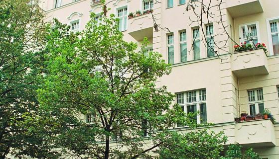 Naumannstraße 12